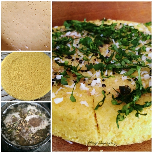 Dhokla Collage
